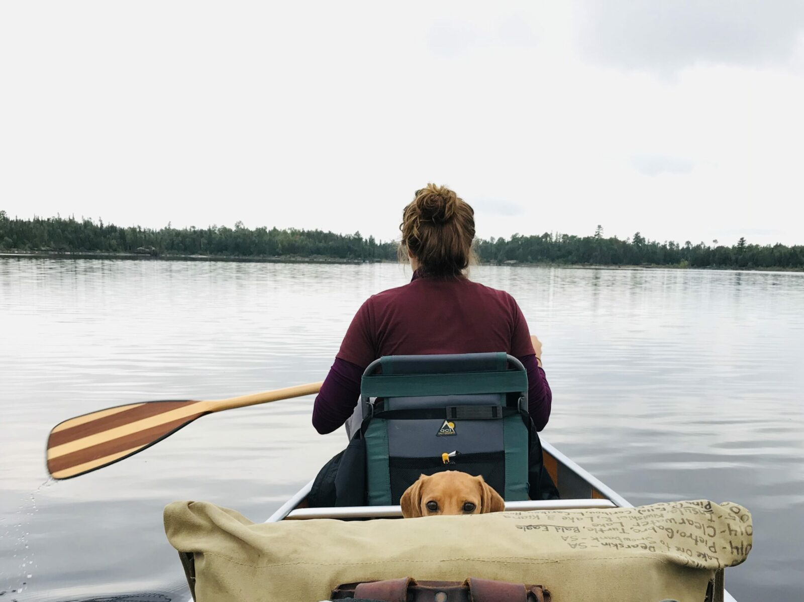 Image of a dog and woman canoeing the Boundary Waters.