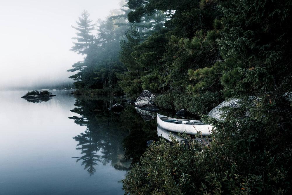 Jenny_Salita_Landscape.jpg